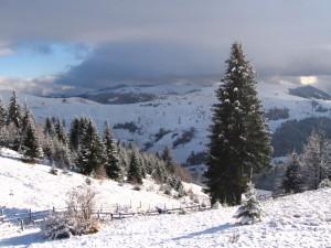 lectie-foto-peisaj-de-iarna