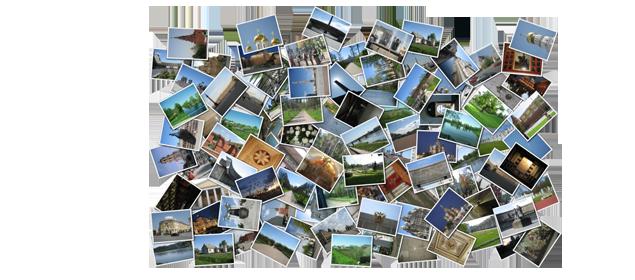 colaj-fotografii