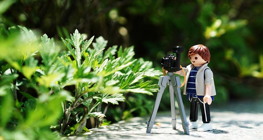 Să înțelegem genurile fotografice - F64 Blog